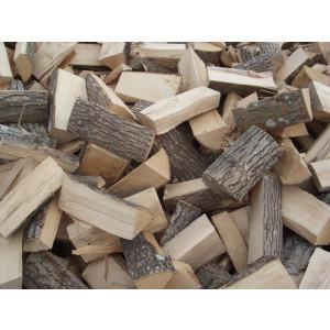 Asketræ, løst gratis levering